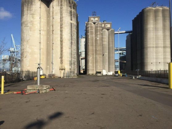 Grain silos at Great Western Malting